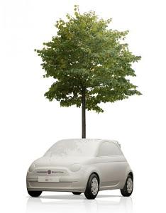 fiat_500c_planters_tree_milan_3